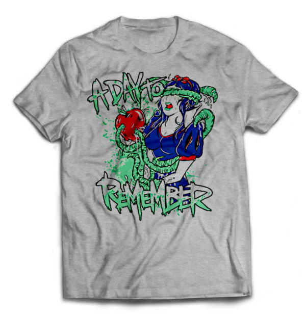 футболка серая Day to Remember