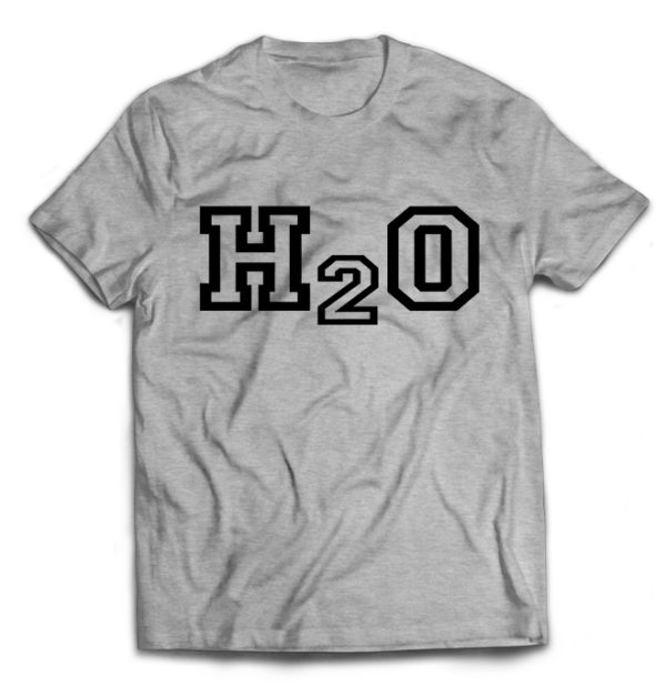 футболка серая H2O